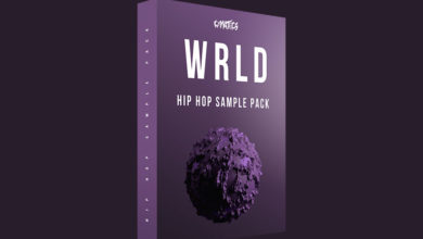 Photo of Juice WRLD Hip Hop Sample Pack