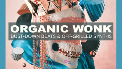 Photo of Organic Wonk Bust-Down Beats & Off-Grilled Synths