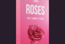 Photo of Roses Pop Sample Pack